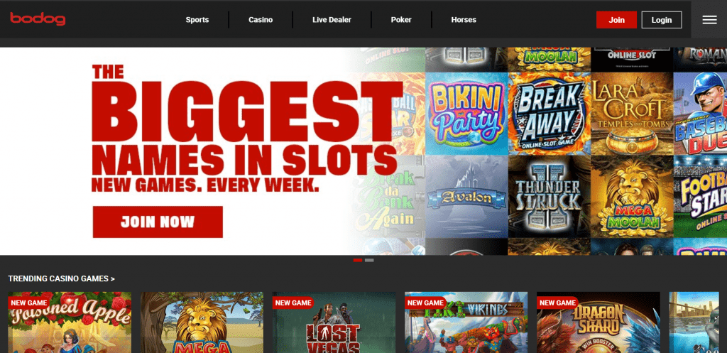 Bodog.eu homepage screenshot